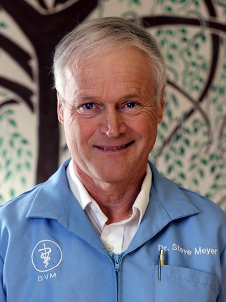 Dr Steven Meyer