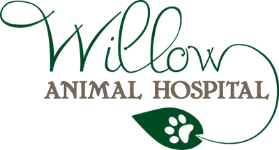 Willow Animal Hospital